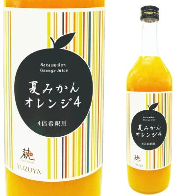 夏みかんオレンジ4