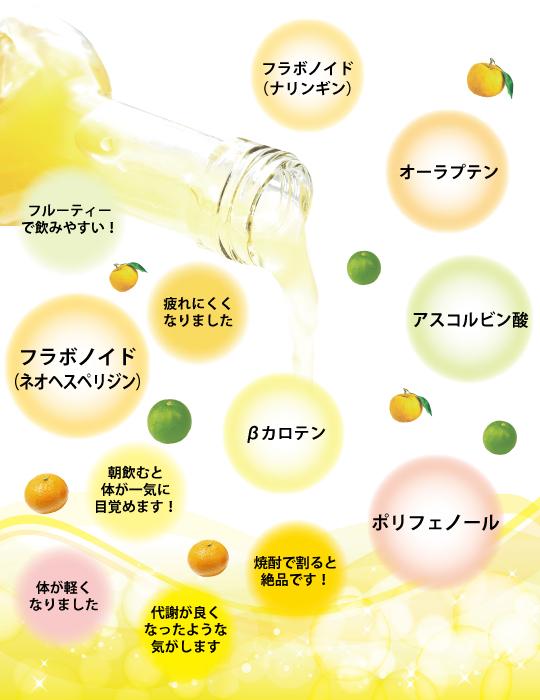 飲む橙の含有成分のイメージ