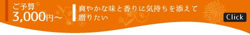 3000円〜のギフトセット