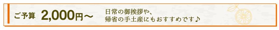 ご予算2000円からのギフト