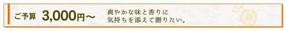 ご予算3000円からのギフト