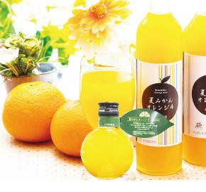 夏みかんオレンジ4(4倍希釈)