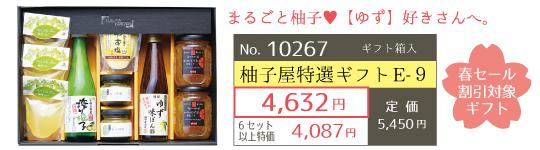 10267-柚子屋特選ギフトE-9-春セール