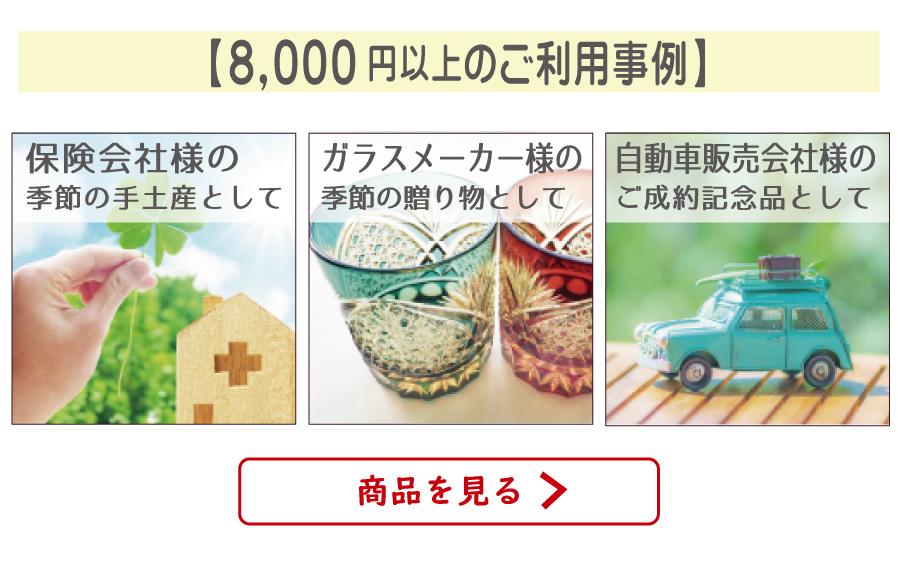 ご利用事例〜価格帯別8000円〜