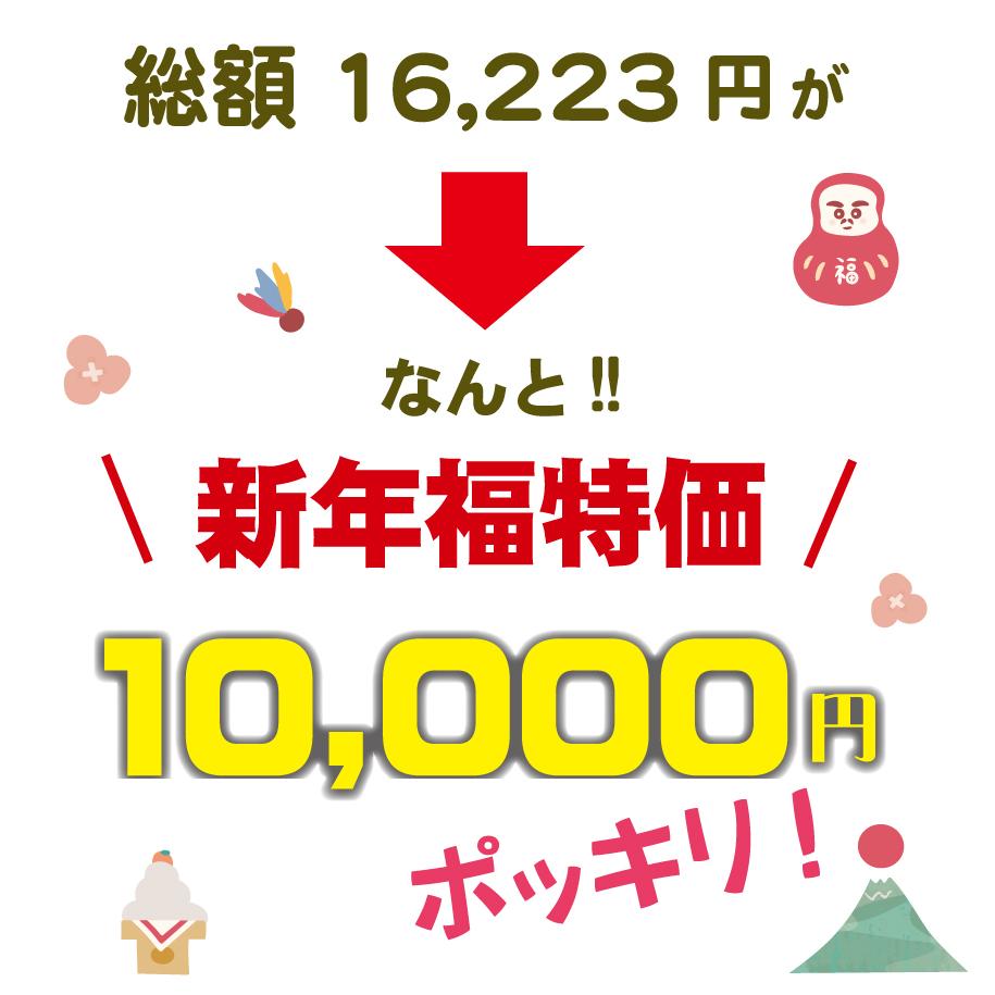 限定30セット送料無料10000円ポッキリ