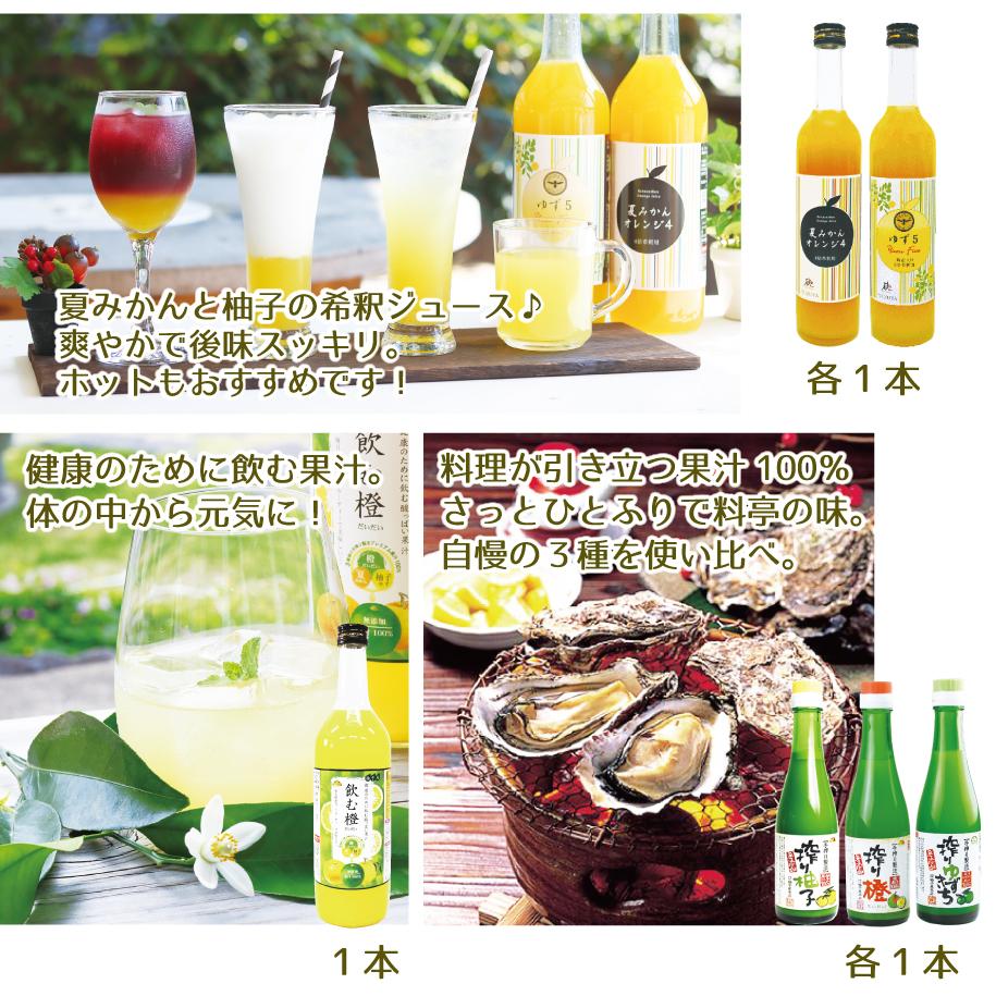 夏みかんオレンジ4&ゆず5&飲む橙&搾り橙・搾り柚子・搾りゆずきち
