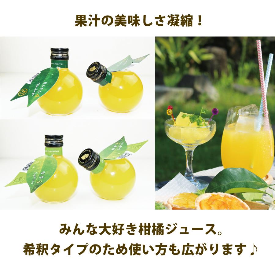 ミカン型の小瓶がキュート♪希釈ジュースからお好きな1品をご選択。<br>飲み終わった後は花瓶としても利用可能。斜めにも置けます。気軽に8品