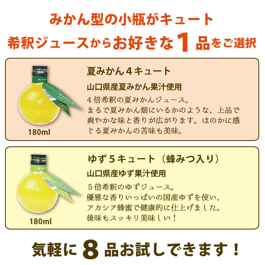 みかん型の小瓶がキュート!希釈ジュースからお好きな1品をご選択