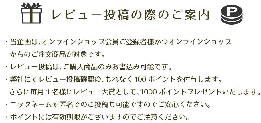 レビューPC006